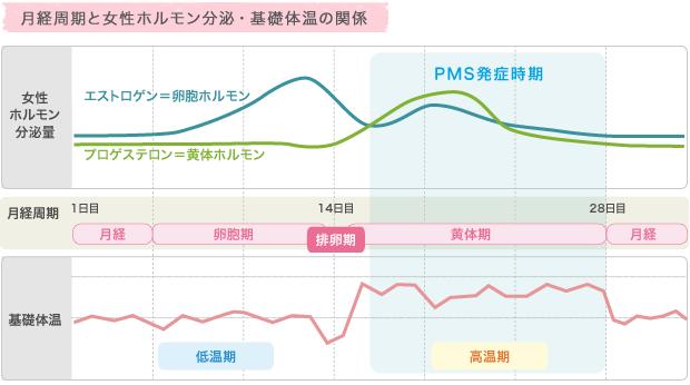 月経周期と女性ホルモン分泌・基礎体温の関係